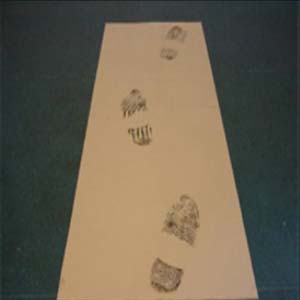 Tapis pelable / collant anti poussière